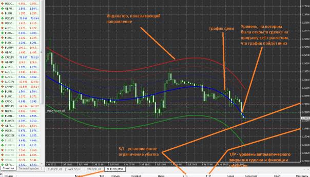 Как совершаются операции на валютном рынке Форекс