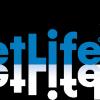 Особенности ценных бумаг компании MetLife для инвесторов